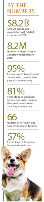 Pet friendly condo statistics